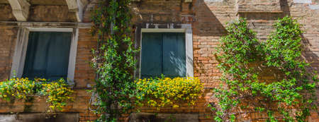 Old vintage windows with colorful flowers, in Venice, Italy.