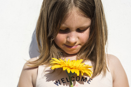 fair hair: Preschool girl with long fair hair looking down at brightyellow flower