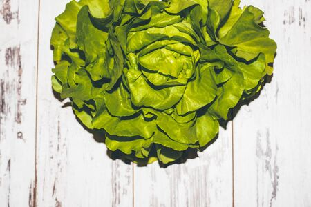 lactuca: Fragment of fresh lettuce on juicy green vintage-styled table