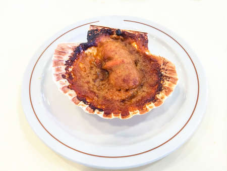 cooktop: Scallop in sauce on plate
