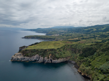 Drone view of amazing Azores landscape. Tea farm in the green fields on the north coast of San Miguel island, Azores, Portugal. Bird eye view, aerial panoramic view. 版權商用圖片