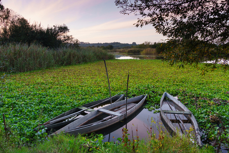 Natural landscape with boats in the water at sunset. Amazing lake with small artisanal fishing boats. Sunrise light reflected in water, mirror effect. Tourist attraction in Portugal. Stock fotó