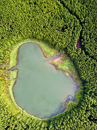 Top down aerial view of a small pond in the middle of a forest, reflecting clouds in the sky.