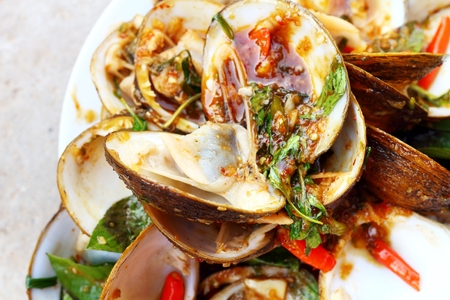 clams: Close-up of steamed clams