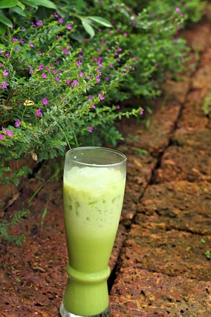 quencher: Green tea in a glass on a green background Stock Photo