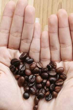 coffeetree: Coffee beans in the hands Stock Photo