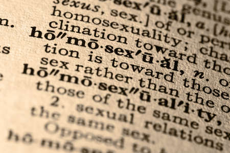 The word homoual. Close-up of the word homoual in a dictionary. Stock Photo