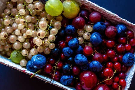 Abstract Close up colorful berries such as blueberry, cherry white currant & red currant 版權商用圖片