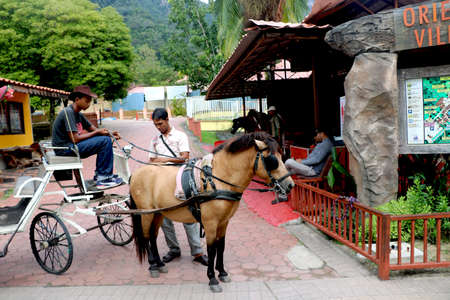 Country- malaysia City- Langkawi Date 07/13/2020 a pony cart in Oriental Village, Langkawi, Malaysia. Attractions for tourists