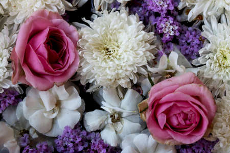 Two Pink rose flowers arrange on white flowers