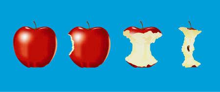 apple bite: Eaten apple on blue background  Illustration