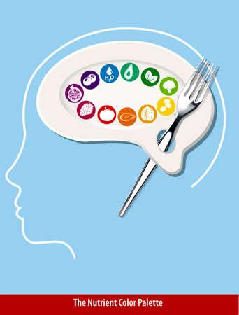 Nutrient Color Palette Brain Shape Vector