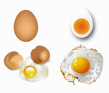 brown egg: Broken egg, fried egg, boiled egg, broken egg, raw egg isolated.  Illustration