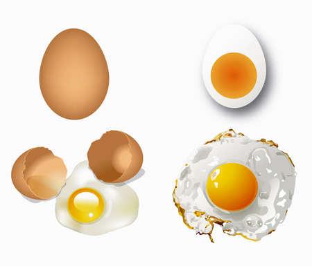 raw egg: Broken egg, fried egg, boiled egg, broken egg, raw egg isolated.  Illustration