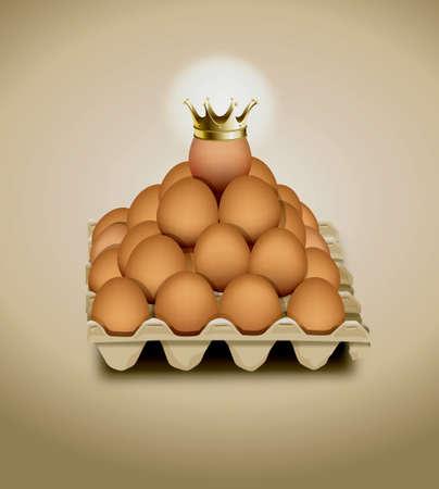 chicken egg: chicken egg in panel eggs