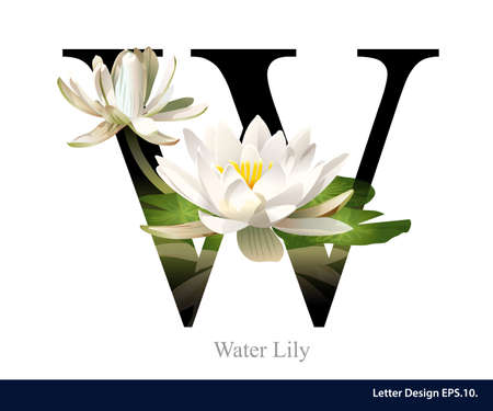 Letter W  vector alphabet with water lily. ABC concept type as logo. Typography design