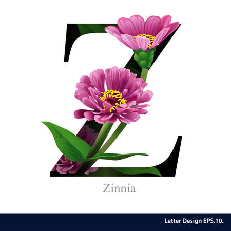 Letter Z  vector alphabet with Zinna. ABC concept type as logo. Typography design