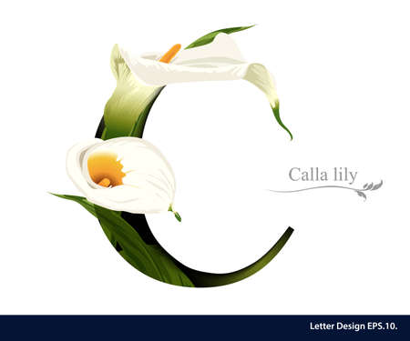 lilies: Letter C vector alphabet with calla lily flower. ABC concept type as logo. Typography design