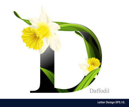 d: Letter D vector alphabet with daffodil flower. ABC concept type. Typography design