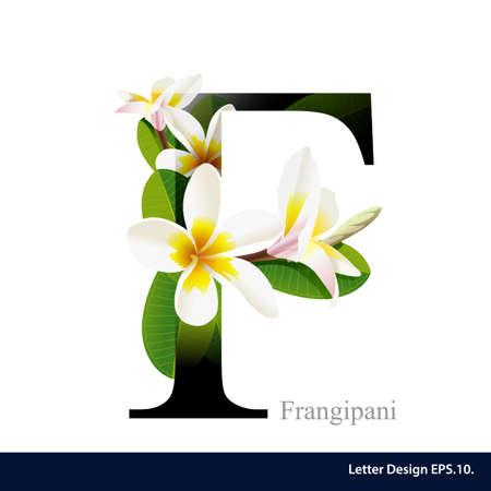 frangipani 꽃과 편지 F 벡터 알파벳입니다. ABC 개념 유형입니다. 타이포그래피 디자인 일러스트