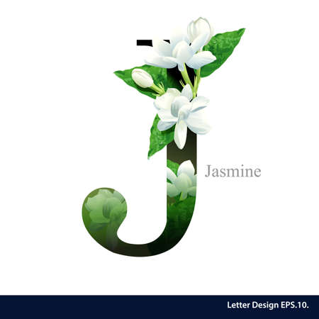 Letter J  vector alphabet with Jasmine flower. ABC concept type. Typography design Illustration
