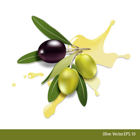 oil crops: Black and green olives with  olive oil on white background