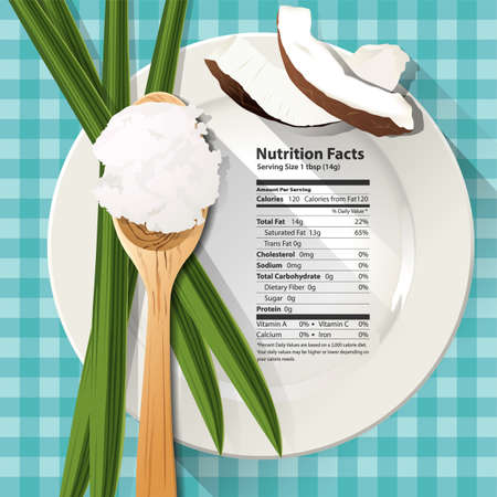 coco: Vector de Hechos de la nutrición en el aceite de coco una cucharada en un plato blanco Vectores