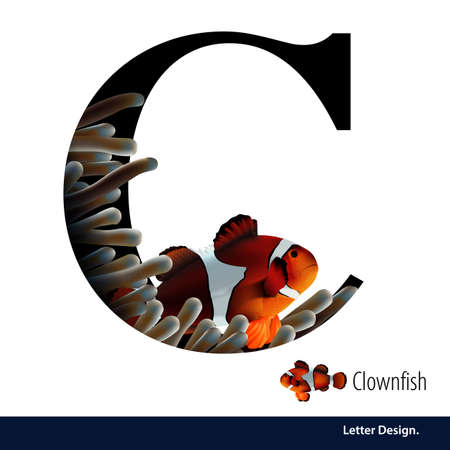 abc book: illustration of Letter C for Clownfish withe coral alphabet. English abc with animals Education on White background. Illustration