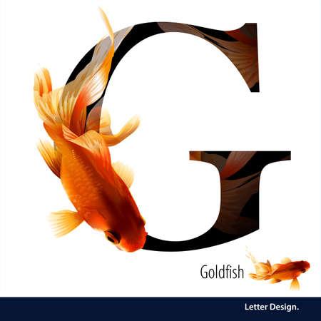 pez dorado: ilustraci�n de G de la letra del alfabeto de peces de colores. abc Ingl�s con los animales Educaci�n sobre fondo blanco.
