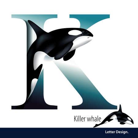 alfabeto con animales: ilustración de la letra K del alfabeto es la orca. abc Inglés con los animales Educación sobre fondo blanco. Vectores