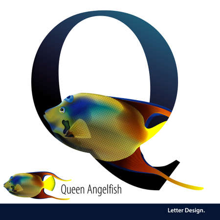 angelfish: illustration of Letter Q is Queen Angelfish alphabet. English abc with animals Education on White background. Illustration