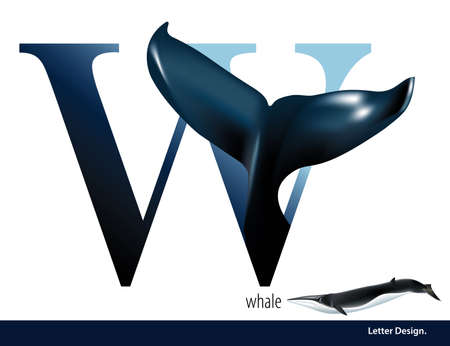 abc book: illustration of Letter W is Whale alphabet. English abc with animals Education on White background. Illustration