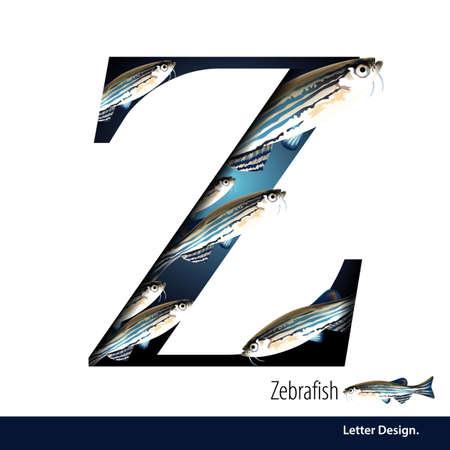 illustration of Letter Z is Zebrafish alphabet. English abc with animals Education on White background. Ilustração