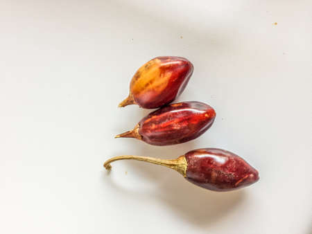 Three red cascabel chile peppers  arranged on a white plate. These peppers are used for a traditional Mexican salsa
