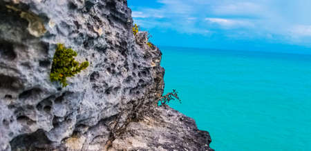 Tropical landscape with rocks against turquoise ocean on Turks Caicos Islands