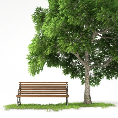bench alone: bench under a tree isolated on white background with clipping path Stock Photo