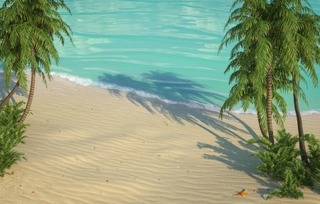 bird s eye: empty caribbean beach from bird s eye view Stock Photo