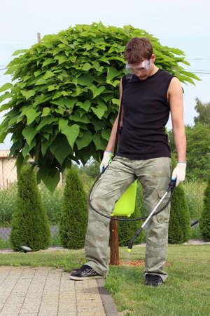 Trabajar en el jard�n, la destrucci�n de las malas hierbas Foto de archivo