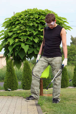 catalpa: Working in the garden, destroying weeds  Stock Photo