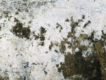 Dirty and wet cement surface texture Stock Photo