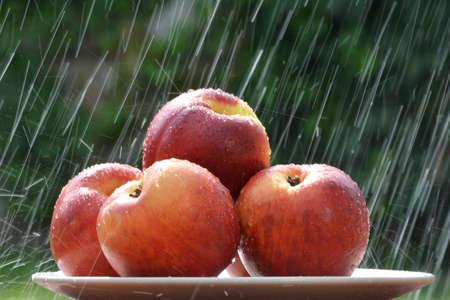 precipitacion: frutas en la lluvia