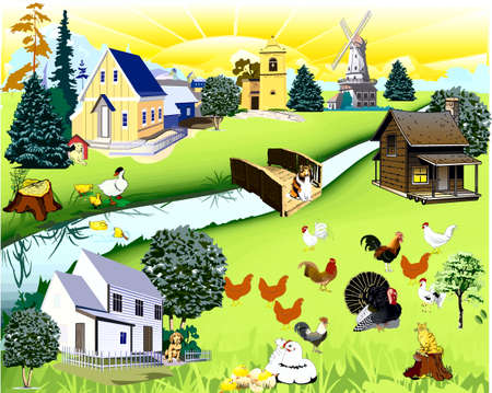The country, bridge, river, dogs, cat, chickens, chickens, turkey-cock  Vector