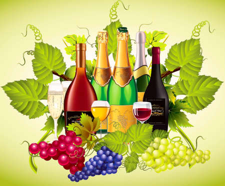 On a background a vine and grape-vine  of bottle with wine and champagne and tall wine glasses