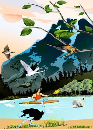 mid air: Para bajar los cisnes del r�o y deportistas nadan en un kayak, un avestruz se apresura en un banco, un pato y ganso mosca en el aire