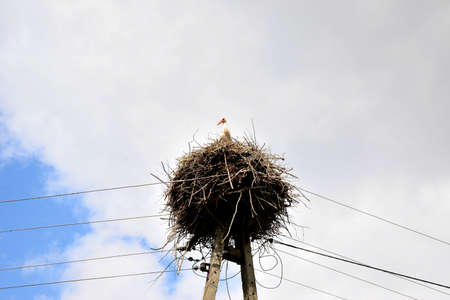 Stork nest on a pole against a background of clouds
