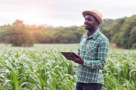 L'agricoltore africano si trova nella fattoria verde con tablet in mano