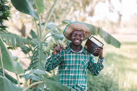African farmer man holding banana branch and vintage radio at the farm