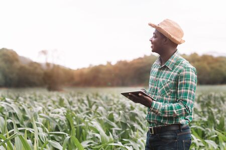 African Farmer stand in the green farm with holding tablet Banque d'images - 132489232