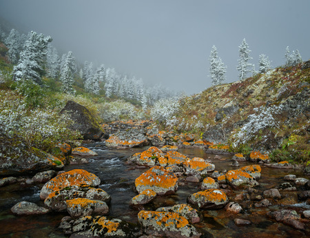 Autumn in the Eastern Sayan Mountains Imagens