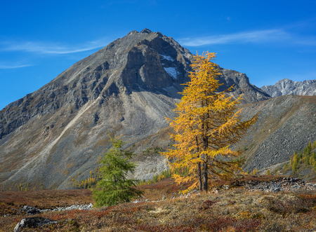 Autumn contrasts in mountains Stock Photo